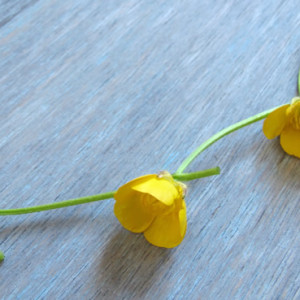 Buttercup Chain