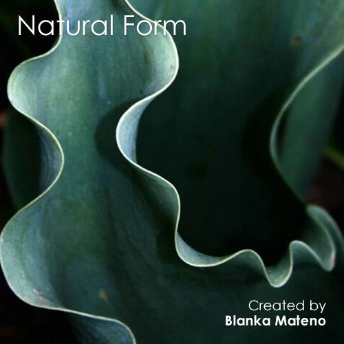 Theme Thursday - Natural Inspiration
