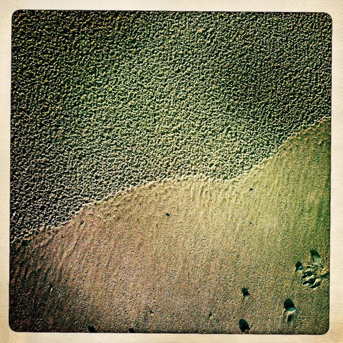 Inspiration – Shifting Sands
