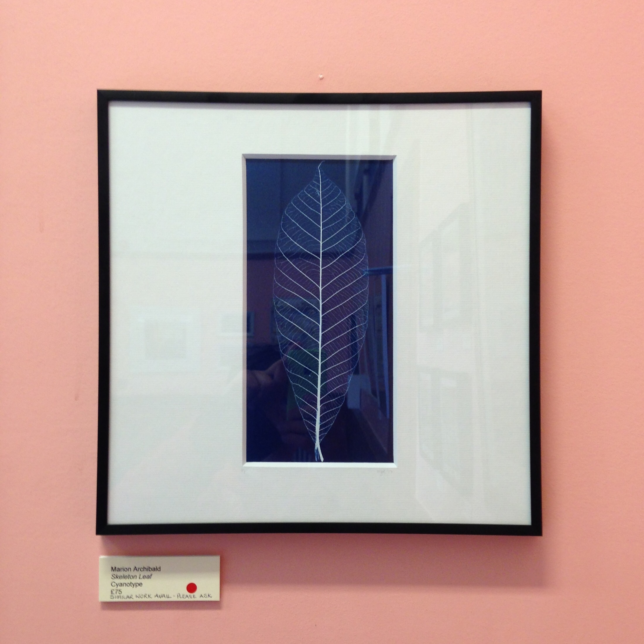 Kinghorn Artists Annual Exhibition - Marion Archibald - Cyanotypes