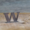 Handcrafted Copper Type - Letter W