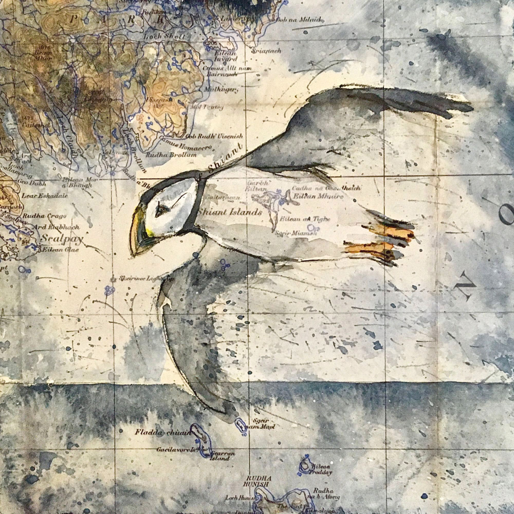 #FridayFaves - Shiant Puffin by Jenny McLaren