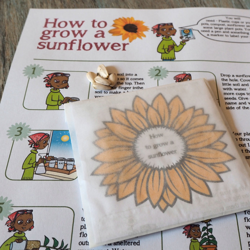 Happy Boxes - Sunflower Seeds Packs with kid friendly instructions