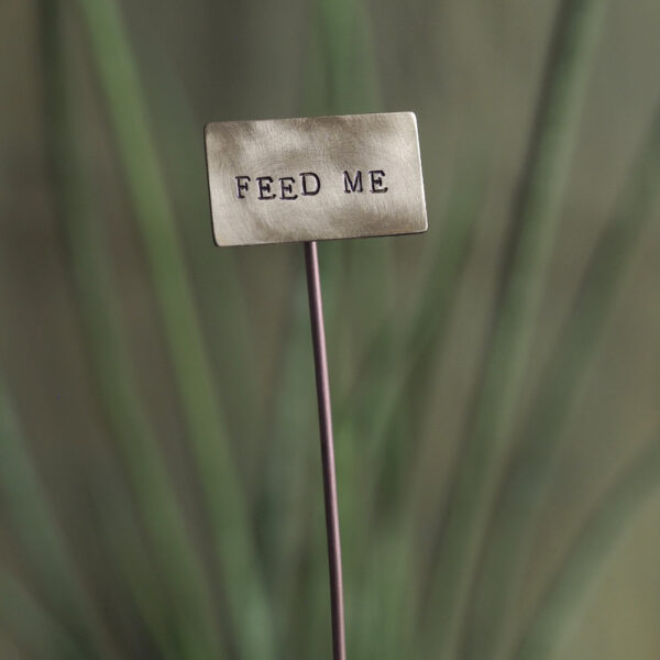 Brass Plant Marker - Feed Me