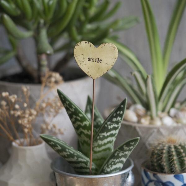 Brass Heart Plant Maker - Smile
